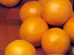 894c2803d1 Elkészítése: Egy kg narancs héját vékonyan lehámozzuk, keskeny csíkokra  vágjuk, és csavaros szörpös üvegbe téve 1,5 - 2 dl tiszta alkoholt öntünk  rá.