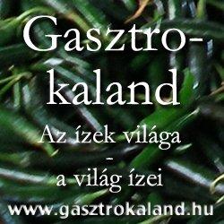 gasztrokaland.hu